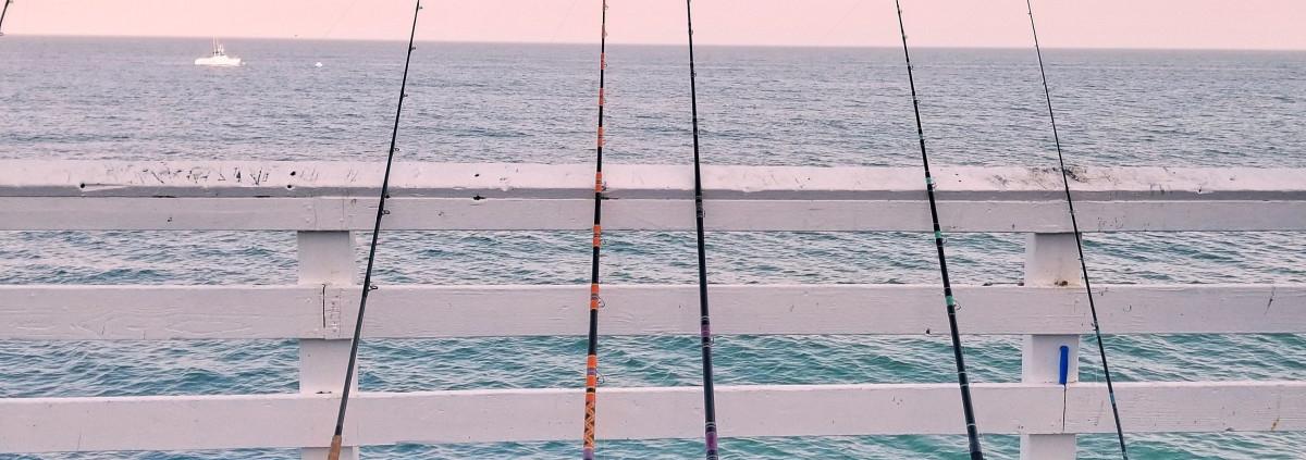 Best Rod For Jig Fishing